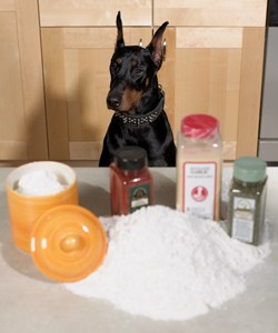 Ingredient security: Art photo of doberman guarding food ingredients