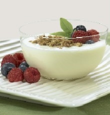 Wellness Foods: Yogurt made with inulin from Orafti