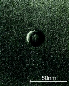 An electronmicrograph of a vitamin A micelle shows it to be smaller than 50 nm, its size making it more easily absorbed by the body.