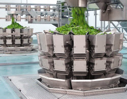 heat-controlfFresh-produce-weigher.jpg